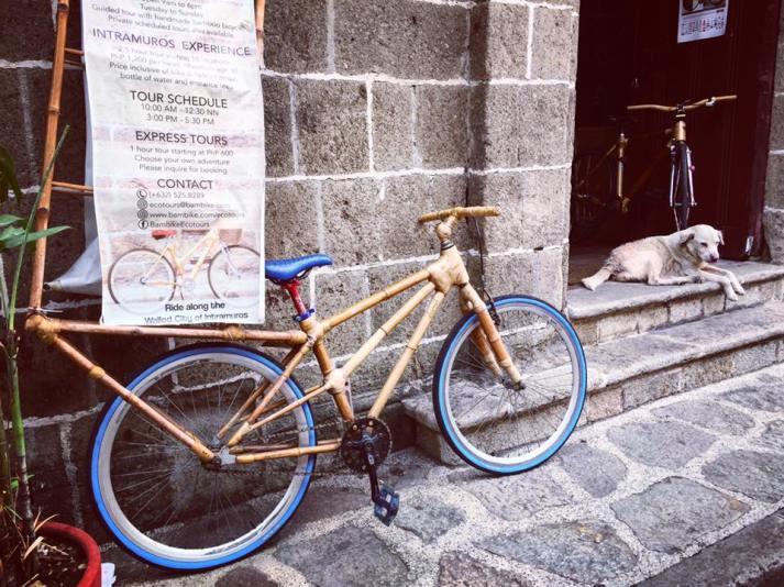 bici intramuros